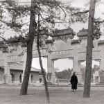 China | Siling Westgräber